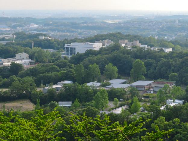 西高森山展望台から見た旧・春日台職業訓練校と愛知県医療療育総合センターの建物