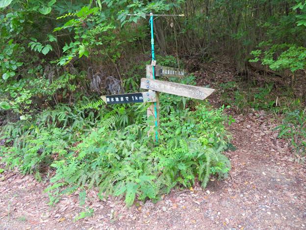西高森山登山道:東海自然歩道春日井コース No.6 の分かれ道