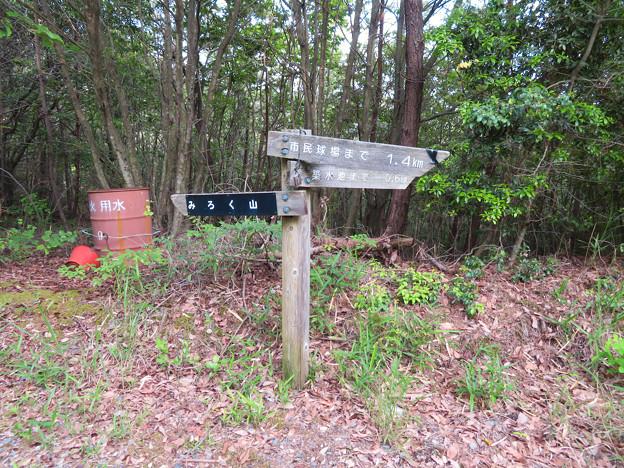 西高森山登山道:東海自然歩道春日井コース No.12 の分かれ道 - 1