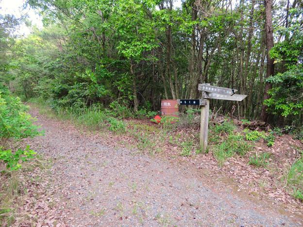 西高森山登山道:東海自然歩道春日井コース No.12 の分かれ道 - 2
