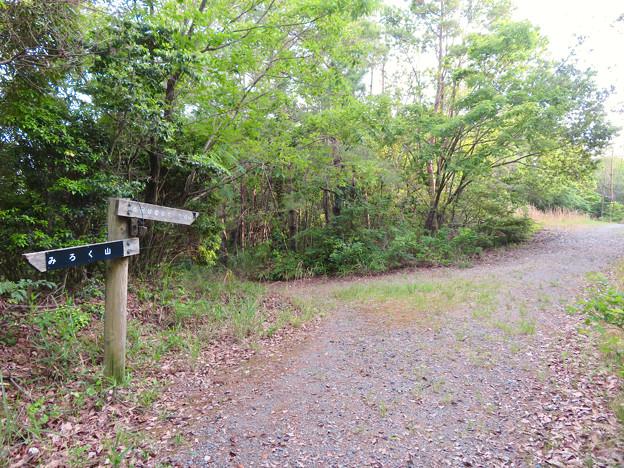 西高森山登山道:東海自然歩道春日井コース No.12 の分かれ道 - 3