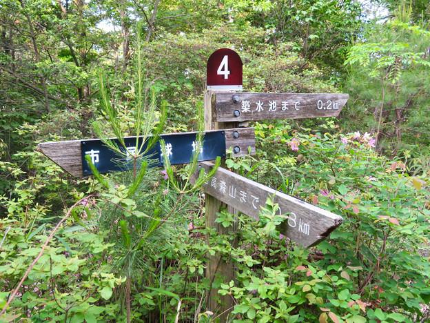 西高森山登山道:東海自然歩道春日井コース No.4 の分かれ道 - 1