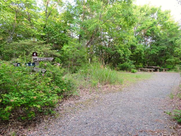 西高森山登山道:東海自然歩道春日井コース No.4 の分かれ道 - 2