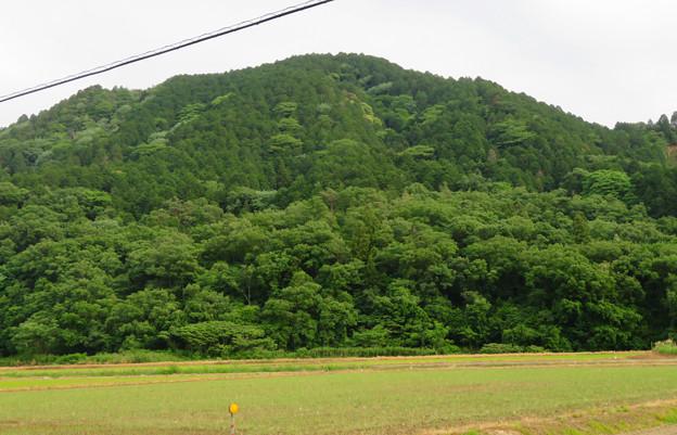 北側から見た本宮山 - 3