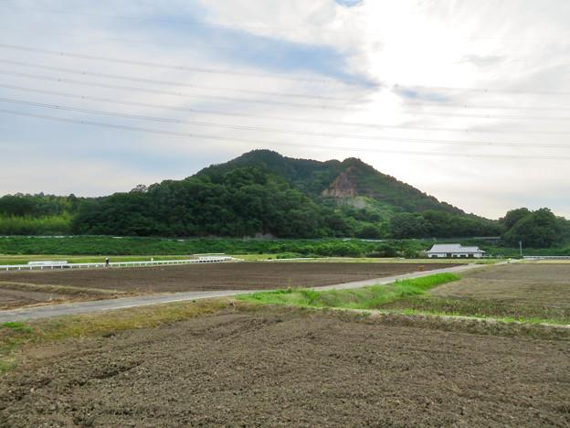 入鹿池近くのコンビニから見た本宮山 - 1
