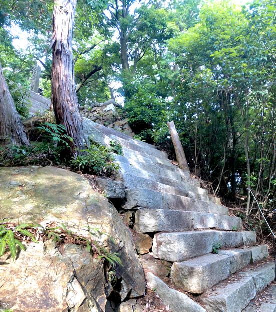 尾張富士の大宮浅間神社側登山道 - 23:山頂手前の急な階段(縦パノラマ)