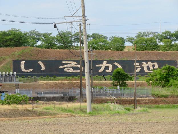 入鹿池南側土手にある「いるか池」の文字 - 2