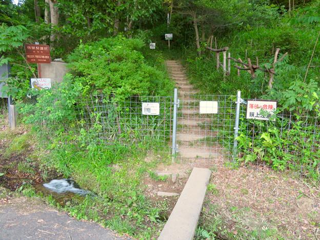 春日井少年自然の家の宮滝大池側出入り口 - 3:イノシシ対策の柵