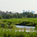 庄内川沿いから見た名駅ビル群 - 2