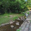 小幡緑地 本園 - 46