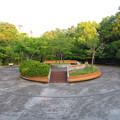 小幡緑地 本園 - 47