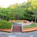 Photos: 小幡緑地 本園 - 48