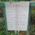Photos: 小幡緑地 本園 - 51:ホタルに関する注意書き