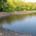 小幡緑地 本園 - 53:見返池