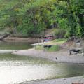 Photos: 小幡緑地 本園 - 54:見返池