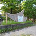 Photos: 小幡緑地 本園 - 56