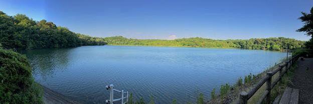 小幡緑地 緑ヶ池のパノラマ写真 - 1