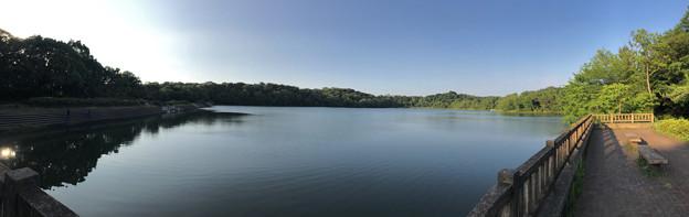 小幡緑地 緑ヶ池のパノラマ写真 - 2