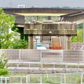 解体工事中の桃花台線桃花台東駅(2020年6月13日) - 15