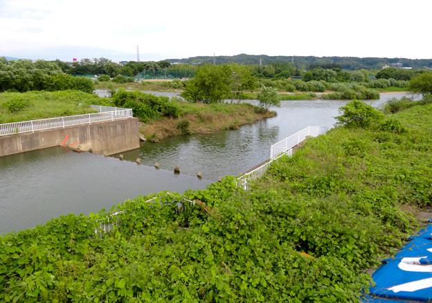 内津川・庄内川合流地点と上条用水堰 - 1