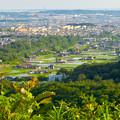Photos: 西高森山の山頂から見た景色 - 17:廻間町の大谷川沿いの田園地帯