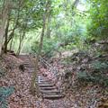 Photos: 海上の森 - 12:あいち海上の森センター遊歩道
