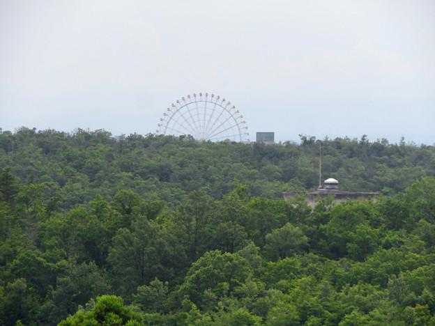 海上の森 - 34:物見の丘(展望台)から見た愛・地球博記念公園の観覧車