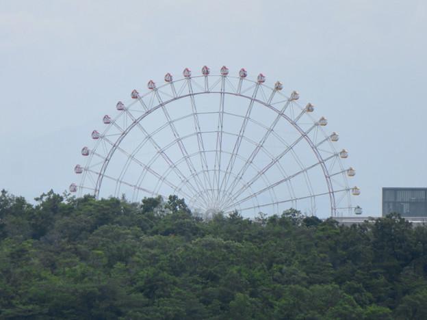 海上の森 - 35:物見の丘(展望台)から見た愛・地球博記念公園の観覧車