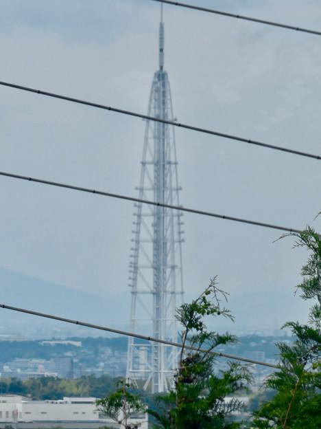 海上の森 - 39:物見の丘(展望台)から見た瀬戸デジタルタワー