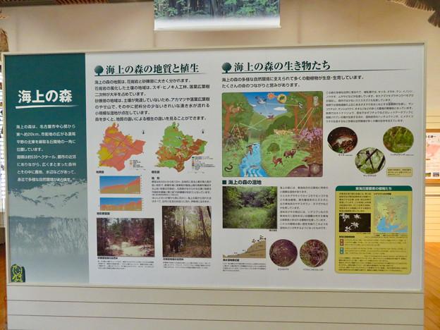 海上の森 - 44:あいち海上の森センター本館にある海上の森の説明