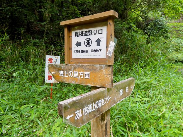 海上の森 - 53:吉田川沿いの分かれ道(尾根道登り口36番)