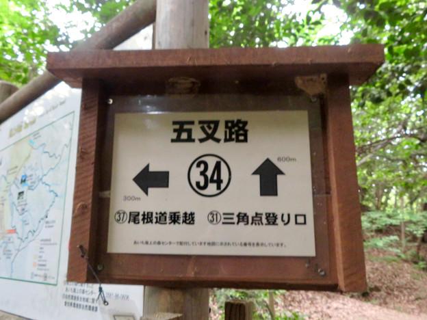 海上の森 - 68:五叉路34番の案内板