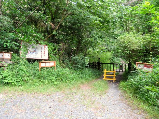 海上の森 - 92:物見山林道分岐3番の森の出入り口