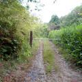 Photos: 海上の森 - 110:森の出入り口