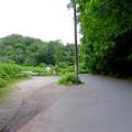 海上の森 - 126:1番入り口駐車スペースの出入り口