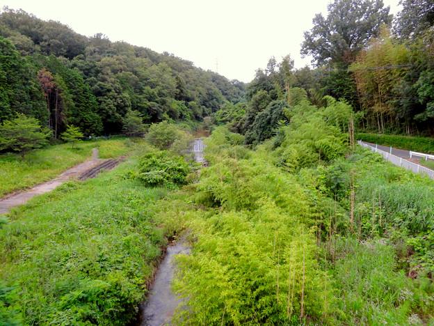 海上の森 - 127:矢田川(赤津川)