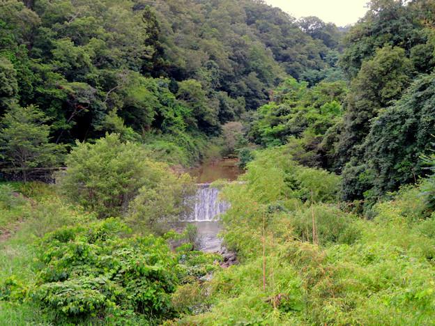 海上の森 - 128:矢田川(赤津川)