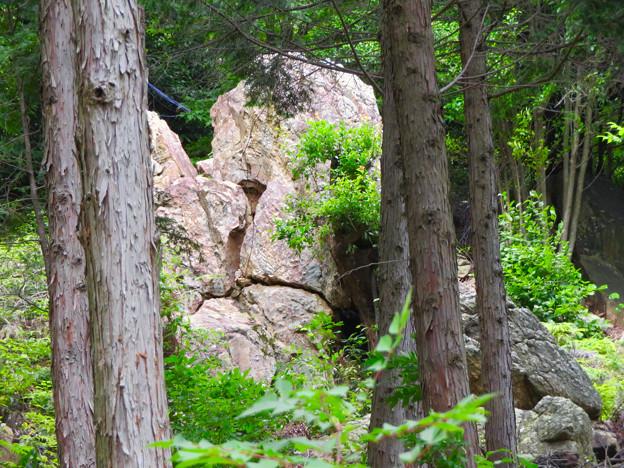大谷山 - 14:巨大な岩