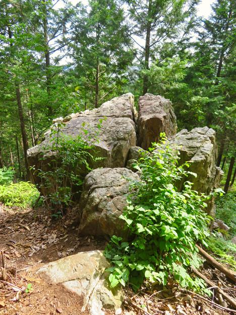 大谷山 - 16:岩山休憩所近くにある巨大な岩