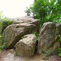 Photos: 大谷山 - 18:岩山休憩所近くにある巨大な岩
