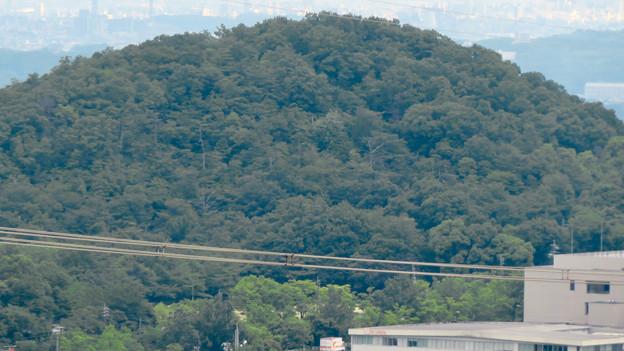Photos: 大谷山 - 21:岩山休憩所近くにある巨大な岩から見た高森山
