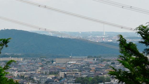 大谷山 - 22:岩山休憩所近くにある巨大な岩から見た瀬戸デジタルタワー