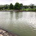 大雨の影響で水かさが増えていた落合公園の落合池 - 2