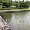 大雨の影響で水かさが増えていた落合公園の落合池 - 3