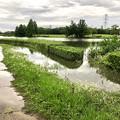 大雨の影響で水かさが増えていた落合公園の落合池 - 6:一部水が溢れてた場所