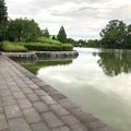 大雨の影響で水かさが増えていた落合公園の落合池 - 10
