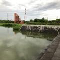 大雨の影響で水かさが増えていた落合公園の落合池 - 11