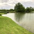 大雨の影響で水かさが増えていた落合公園の落合池 - 12