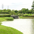 大雨の影響で水かさが増えていた落合公園の落合池 - 13