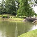 大雨の影響で水かさが増えていた落合公園の落合池 - 15